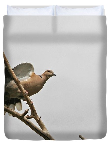 Duvet Cover featuring the photograph The New Dove In Town by Tom Janca