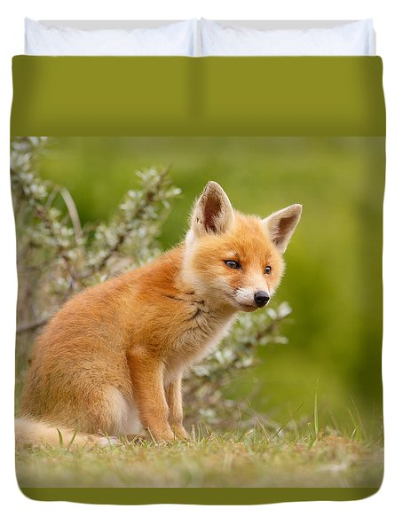 The New Kit ...curious Red Fox Cub Duvet Cover