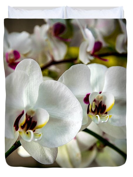 The Orchid Sisters And Backup Singers Duvet Cover by John Haldane