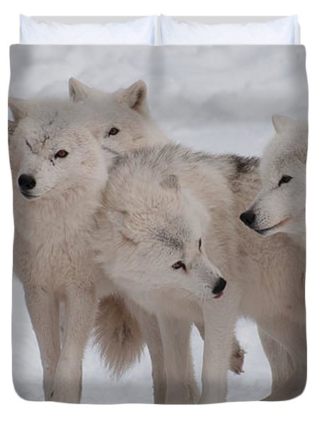 Duvet Cover featuring the photograph The Pack by Bianca Nadeau