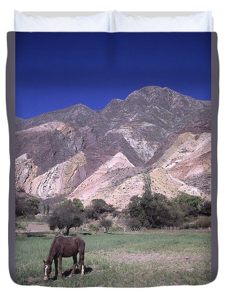 The Painters Palette Jujuy Argentina Duvet Cover by James Brunker