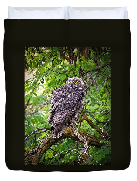 The Perch Duvet Cover by Steve McKinzie