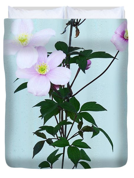 The Pink Clematis Duvet Cover by Steve Taylor