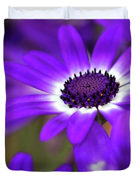 The Purple Daisy Duvet Cover by Sabrina L Ryan