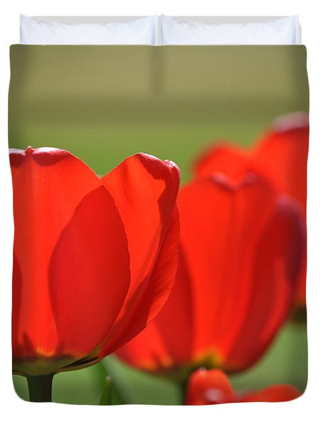 The Red Tulips Duvet Cover by Eric Liller