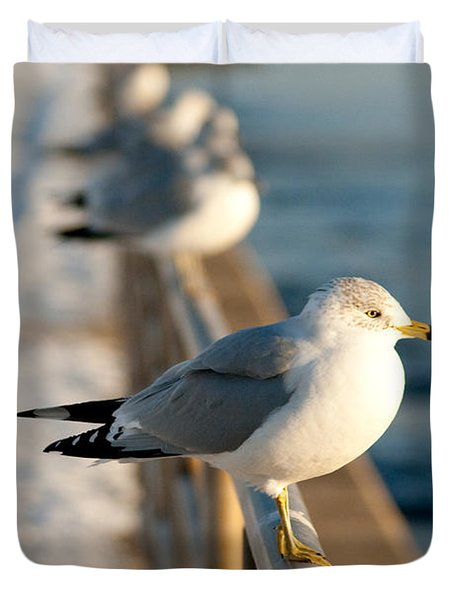 The Ring-billed Gull Duvet Cover