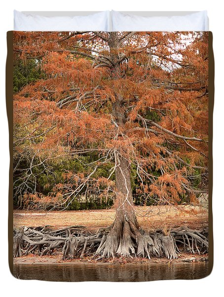 Duvet Cover featuring the photograph The Root Of It All by Rebecca Davis