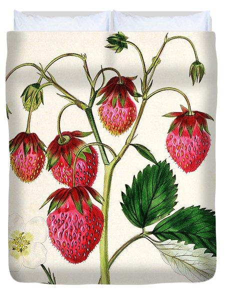 The Roseberry Strawberry Duvet Cover by Edwin Dalton Smith