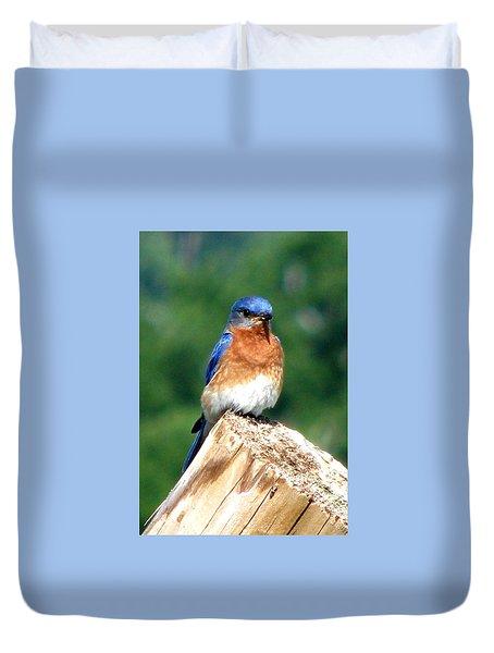 The Serendipitous Bluebird Duvet Cover by Angela Davies