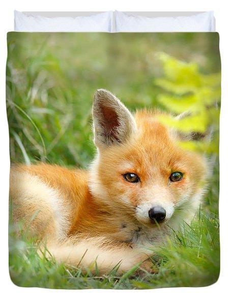 The Shy Kit Fox Cub Hiding Behind Some Ferns Duvet Cover
