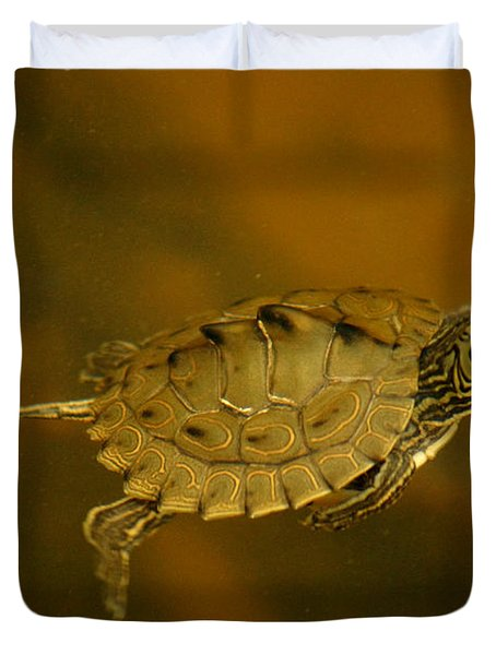 The Southeastern Map Turtle Duvet Cover