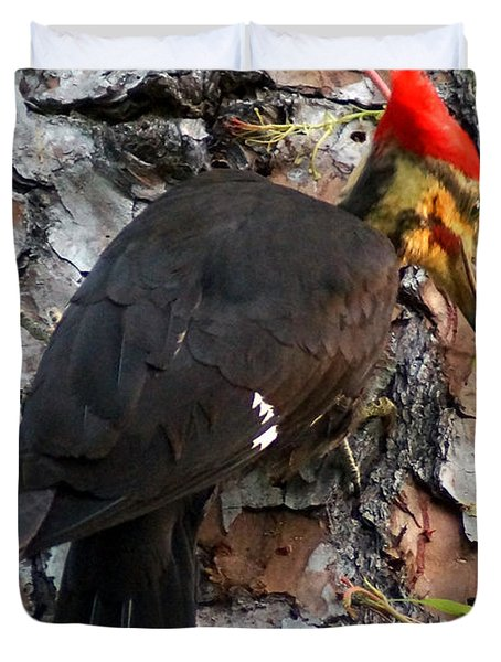 The Southeastern Pileated Woodpecker Duvet Cover by Kim Pate
