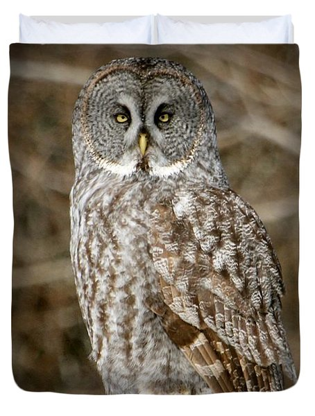 The Stare Down Duvet Cover by Heather King
