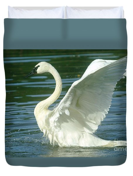 The Swan Rises  Duvet Cover by Jeff Swan