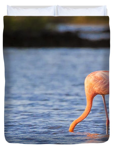 The Three Flamingos Duvet Cover by Adam Romanowicz