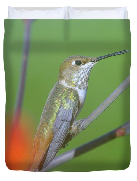 The Tongue Of A Humming Bird  Duvet Cover by Jeff Swan