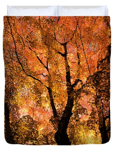 The Trees Dance As The Sun Smiles Duvet Cover by Don Schwartz