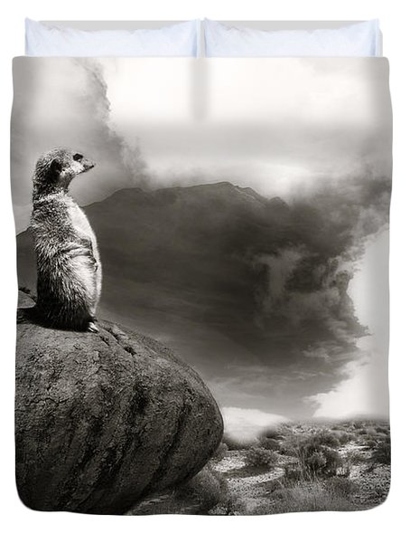 Duvet Cover featuring the photograph The View by Christine Sponchia