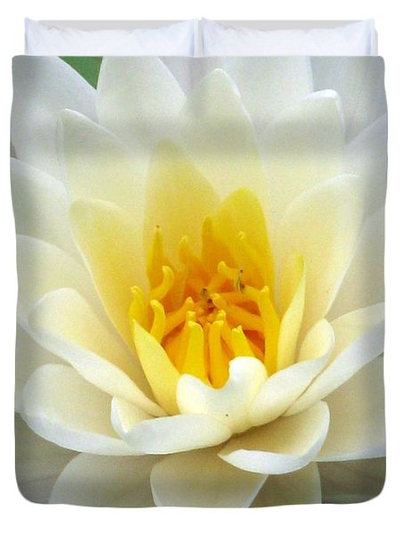 Duvet Cover featuring the photograph The Water Lilies Collection - 03 by Pamela Critchlow