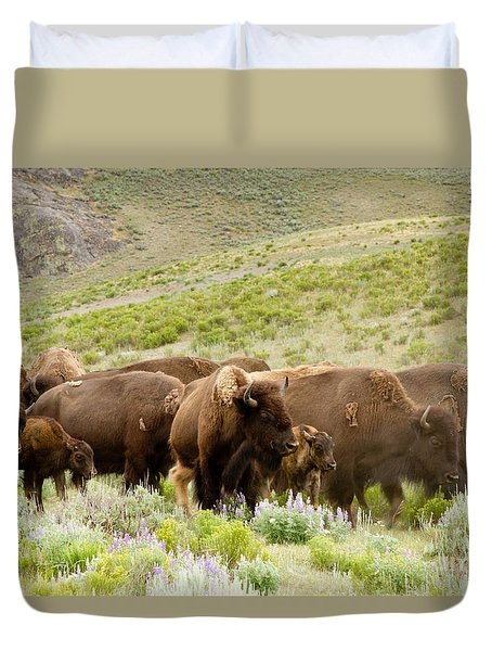 The Wild West Duvet Cover by Bill Gallagher