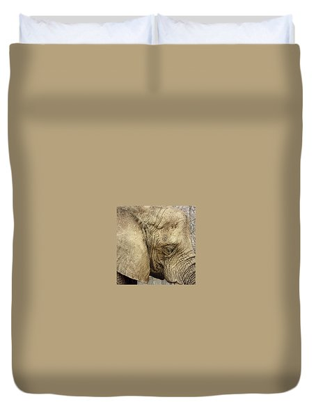 Duvet Cover featuring the photograph The Wise Old Elephant by Nikki McInnes