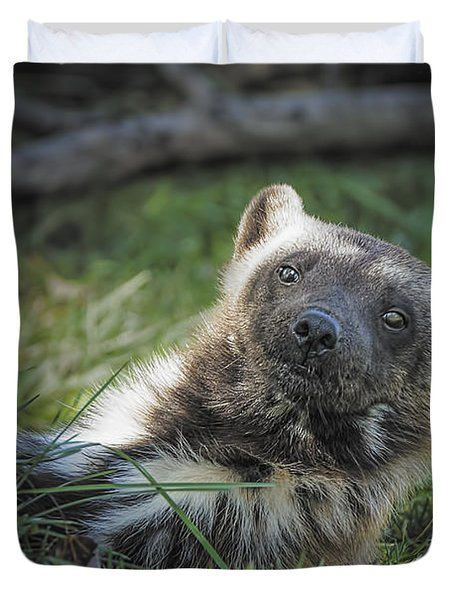 The Wolverine Skunk Bear Happy Face Duvet Cover by LeeAnn McLaneGoetz McLaneGoetzStudioLLCcom