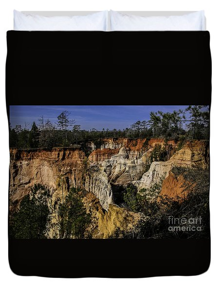 Beauty In Erosion Duvet Cover