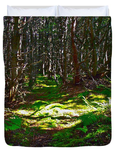 Thicket-like Woods And Spongy Moss Near Lobster Cove In Gros Mor Duvet Cover