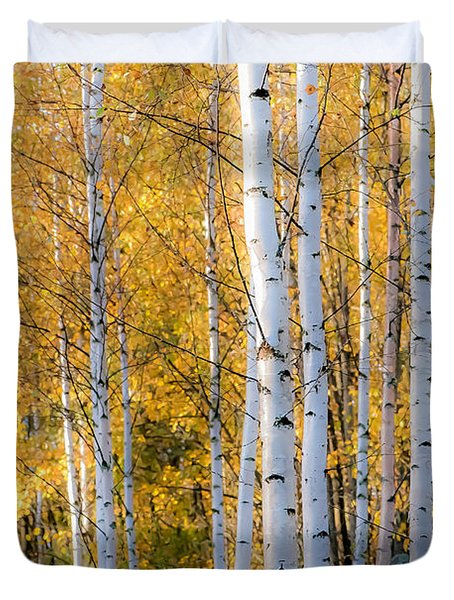 Thin Birches Duvet Cover