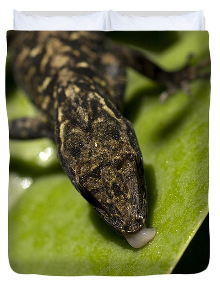 Duvet Cover featuring the photograph Thirsty Brown Anole by Meg Rousher