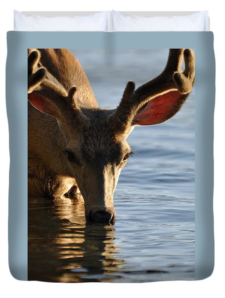 Thirsty Deer In Lake Mcdonald Duvet Cover