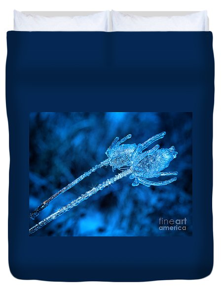 Thistle Plant On Icy Night Duvet Cover