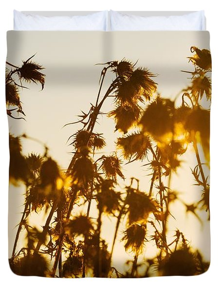 Duvet Cover featuring the photograph Thistles In The Sunset by Chevy Fleet