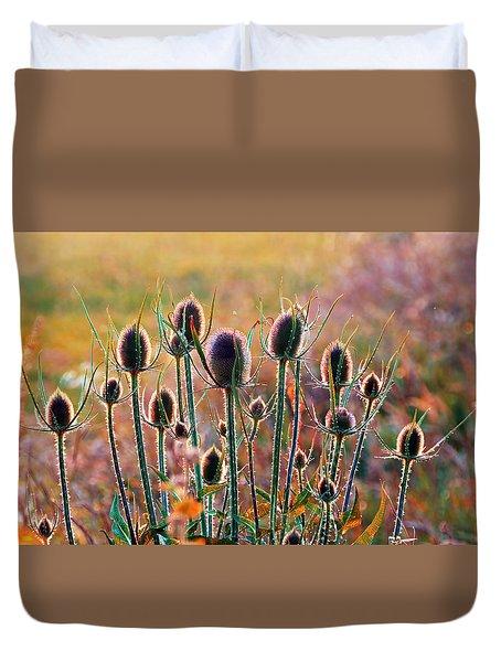 Thistles With Sunset Light Duvet Cover