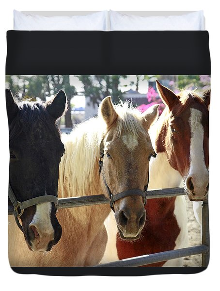 Three Amigos Duvet Cover by Shoal Hollingsworth