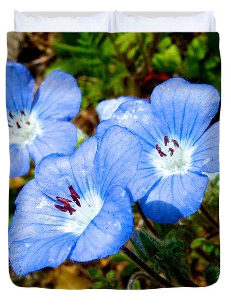 Three Baby Blue Eyes In Park Sierra-ca Duvet Cover by Ruth Hager
