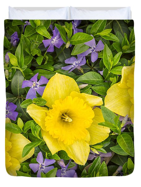Three Daffodils In Blooming Periwinkle Duvet Cover by Adam Romanowicz
