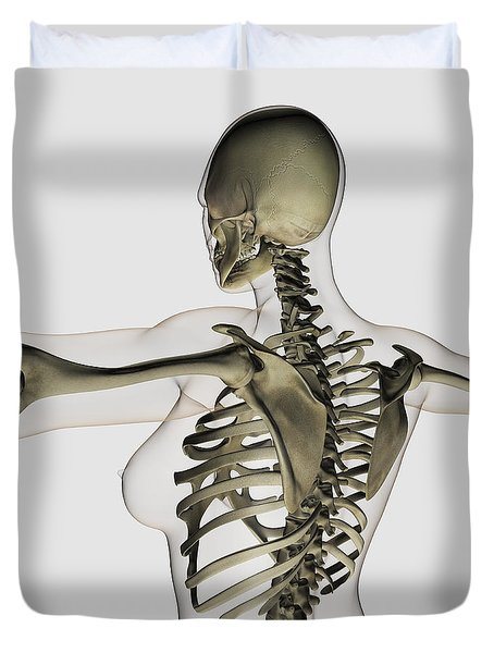 Three Dimensional View Of Female Upper Duvet Cover by Stocktrek Images