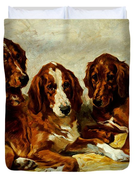 Three Irish Red Setters Duvet Cover by John Emms