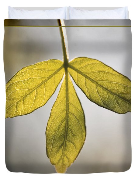 Duvet Cover featuring the photograph Three Leaves by Jaki Miller