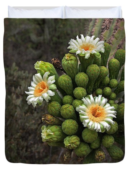 Three Saguaro Blossoms And Many Buds Duvet Cover