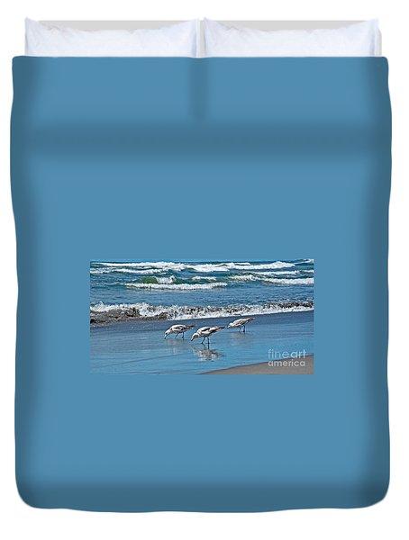 Three Seagulls At Ocean Shore Art Prints Duvet Cover by Valerie Garner