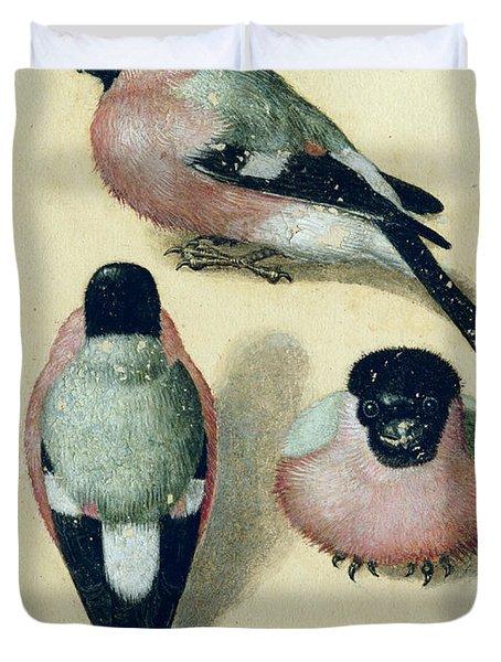 Three Studies Of A Bullfinch Duvet Cover by Albrecht Durer