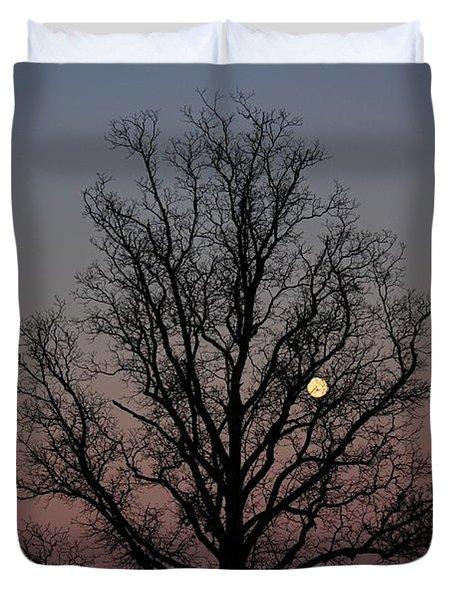 Through The Boughs Landscape Duvet Cover by Dan Stone