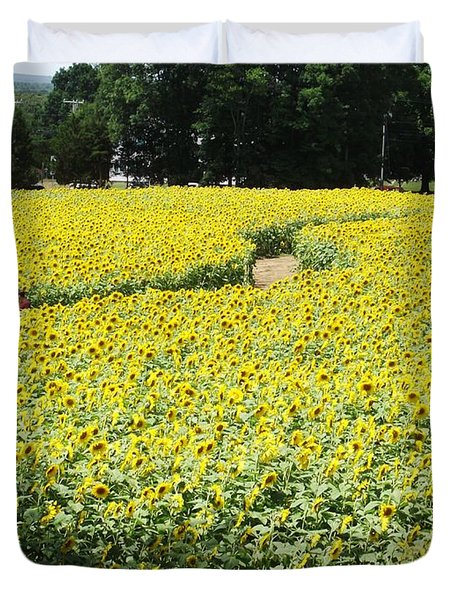 Through The Sunflowers Duvet Cover by Michelle Welles