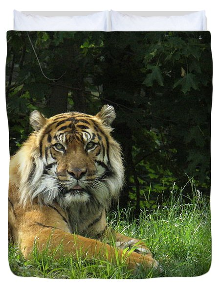 Duvet Cover featuring the photograph Tiger At Rest by Lingfai Leung