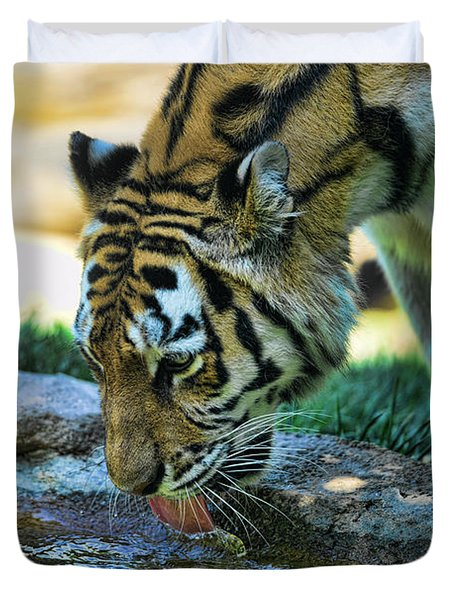 Tiger Drinking Water Duvet Cover by Paul Ward