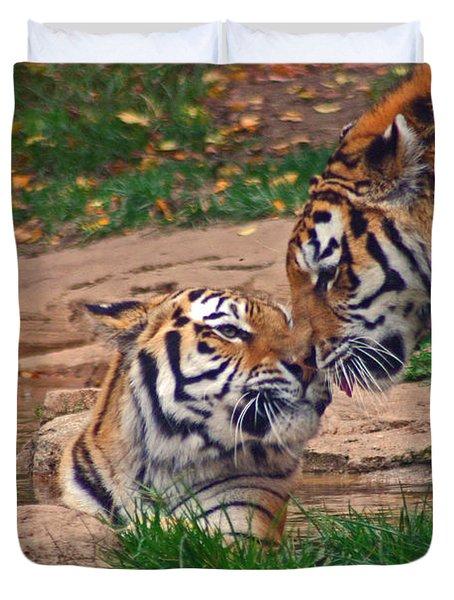 Tiger Kiss Duvet Cover by David Rucker