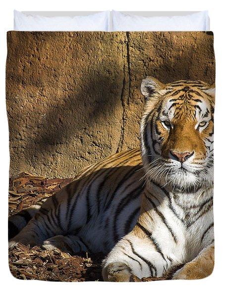 Tiger Duvet Cover by Steven Ralser
