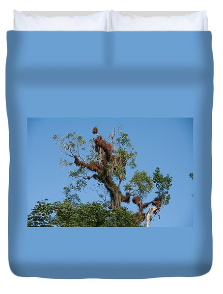 Tikal Furry Tree Duvet Cover